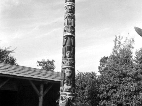Thunderbird Park Pole