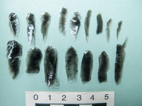 Obsidian Microblades