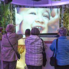 This is a photograph of four women from behind as they watch the feature film in the round theatre at the Our Living Languages exhibition.