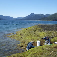 This is an image of two researchers at the oceans edge with a white bucket, mountains in the background.