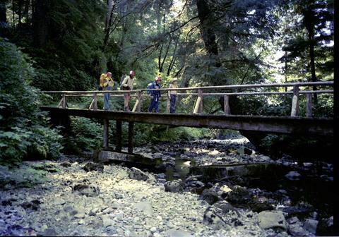Pachena Creek, West Coast Trail