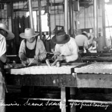 Chinese workers soldering cans in a BC cannery, ca. 1913.