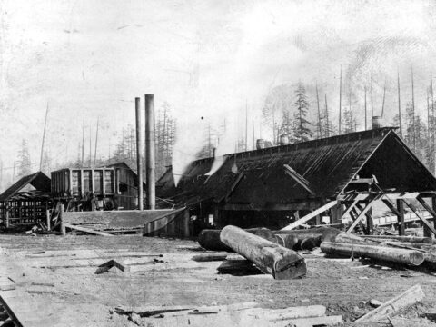 View images of sawmills where Punjabi immigrants worked.