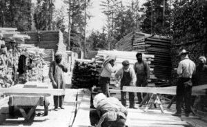 Black and white photograph of seven men working at a saw mill. There are piles of cut lumber stacked behind them. Some men are cutting lumber. The men are wearing work clothes, such as overalls or slacks with suspenders and button-up shirts.