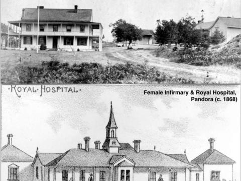 Victoria's first hospitals