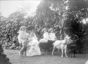 A black and white photograph of the Burns family shows a father holding the reins of two goats hitched to a buggy with two children in it. The mother, two other children and a dog are next to them.
