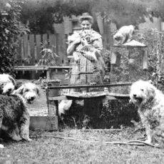 Black and white photograph of artist Emily Carr in her garden with three dogs, two cats and two bird cages, one with a parrot inside.