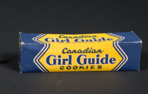 A rectangular blue cardboard Girl Guide cookie box with yellow writing.