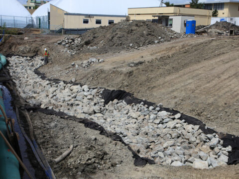 Bowker Creek Restoration