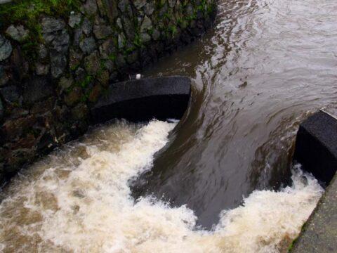 Pollution at Bowker Creek