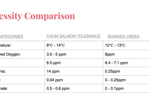Chum Necessity Comparison