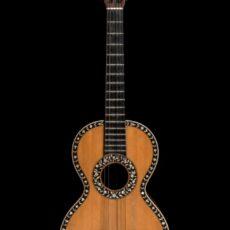 Photo d'une petite guitare très ornée.