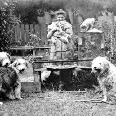 Une photo en noir et blanc de l'artiste Emily Carr, dans son jardin, avec trois chiens, deux chats et deux cages à oiseaux dont l'une contient un perroquet.