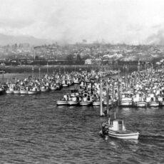 Une photo en noir et blanc de plusieurs bateaux de pêche amarrés aux quais.
