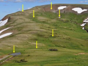 Arrows pointing to different features of a alpine tundra landscape.