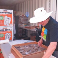 A woman inspecting fossils laid out in a wooden tray. The woman is wearing a white hat to shield her from the sun. Behind her is an open steel shipping container filled with fossil wrapping material and boxes, along with another table covered in tools.
