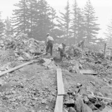 Four men clearing rocks with picks, shovels and wheelbarrows. Evergreen trees in the background.
