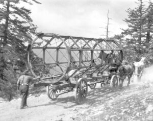 Horses haul the steel frame of the telescope tube up Little Saanich Mountain. A workman follows the cart on a steep, narrow road.