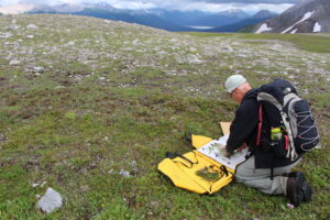 A scientist kneels in the foreground placing plants in a carrier, alpine meadow and mountains in the distance.