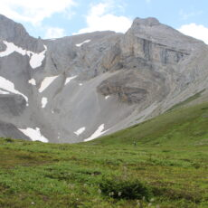 Mountains in the background with some snow patches, green meadow in foreground, a person can be seen near the centre of the image.