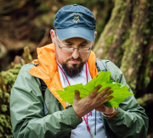 A researcher examines a large bright green leaf in his hand.