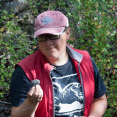 Curator of palaeontology Dr. Victoria Arbour looking at and holding a small round rock.