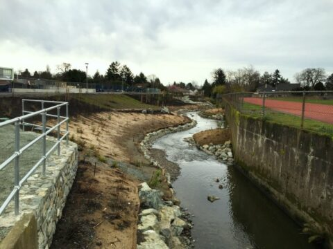 Restoration of Bowker Creek