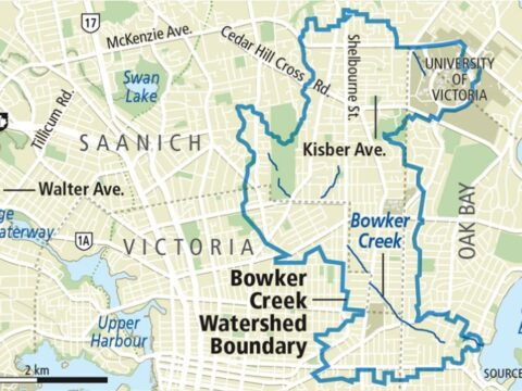 Is the pollution better/worse at different creek points?