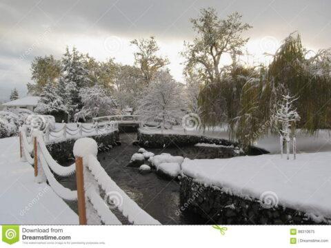 Snowfall in Bowker Creek