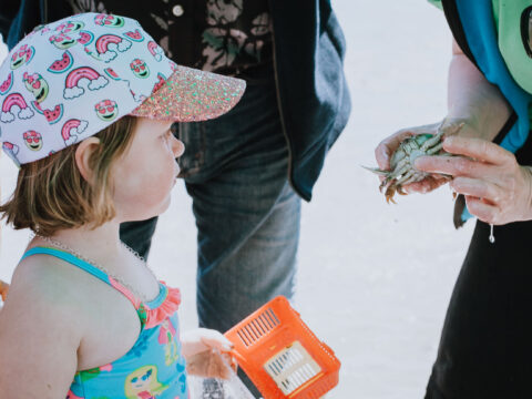 RBCM@outside Sharing Nature with Children