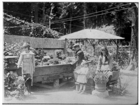 Children at Japanese Tea Garden