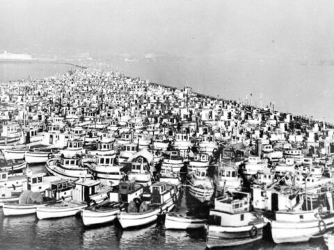 Read about Japanese Canadian fishermen's boats that were confiscated.