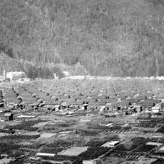 An internment camp showing rows of houses in close proximity. The camp is surrounded by farmland and mountains.