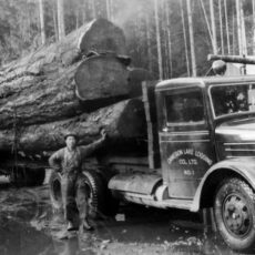Alt text: A man posing next to a large logging truck in front of a forest.