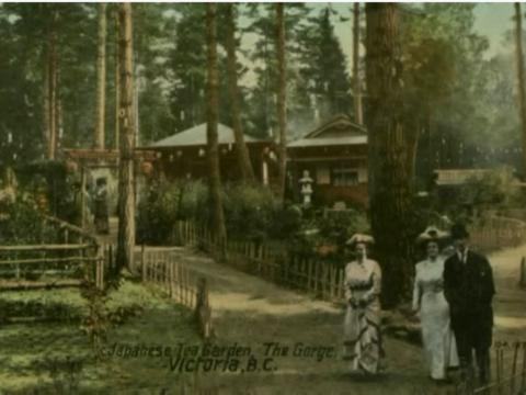 Watch a video about the Japanese Tea Garden at Esquimalt Gorge Park.